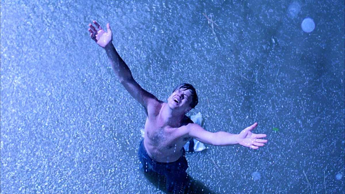 get busy living or get busy dying the th anniversary of the get busy living or get busy dying the 20th anniversary of the shawshank redemption the fluff is raging