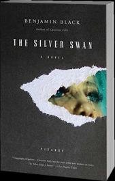 silverswan-3d