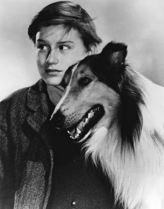 McDowall, Roddy (Lassie Come Home)_01