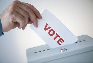 vote-large